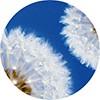 Relleno nórdico Quality ligero 220gr  90 cm Mash